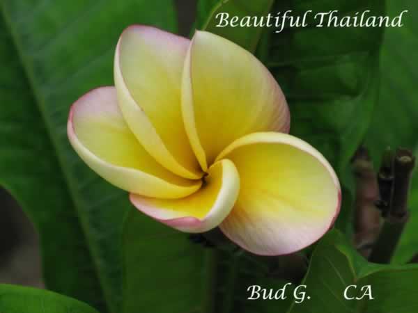 beautiful-thailand