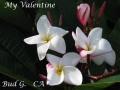 my-valentine-10-25
