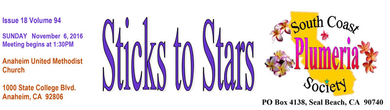 scpsnewsletter-banner